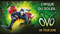 Click to view details and reviews for Cirque Du Soleil Ovo Vip Packages.