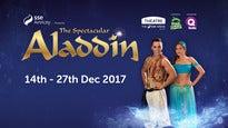The Spectacular Aladdin