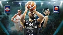 2019 BBL Playoff Finals