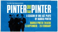 Pinter at The Pinter: Moonlight - Night School