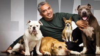 Cesar Millan (A.K.A. the Dog Whisperer)