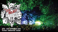 Zoo Project Festival