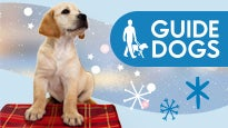 Guide Dogs Christmas Wishes Concert Hosted By Aled Jones