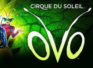 Cirque du Soleil: OVOTickets