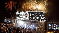 Teddy Rocks 2020 - Weekend Only No Camping