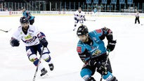 Stena Line Belfast Giants V Sheffield Steelers