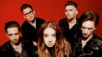 More Info AboutMarmozets