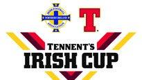 Tennent's Irish Cup Final - Ballinamallard Utd V Crusaders