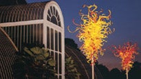 Chihuly - Autumn NightsTickets