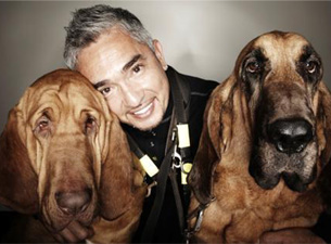 Cesar Millan (A.K.A. the Dog Whisperer) Tickets