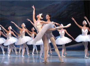 Image result for swan lake russian