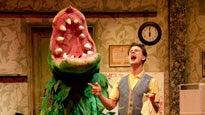 More Info AboutLittle Shop of Horrors