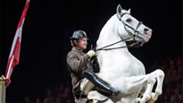 More Info AboutThe Spanish Riding School of Vienna