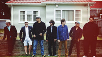 More Info AboutFat Freddy's Drop