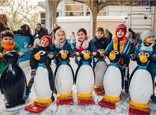 Natural History Museum Ice Rink - Penguin Skate Club Tickets