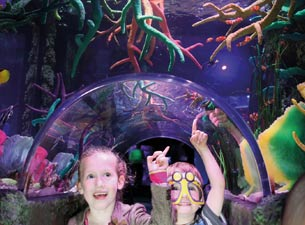 Sea Life London - Standard Entry with Behind the Scenes Tour